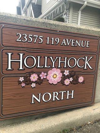 Photo 1: 14 23575 119 AVENUE in Maple Ridge: Cottonwood MR Townhouse for sale : MLS®# R2331001