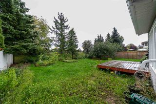Photo 28: 4143 147 Street in Edmonton: Zone 14 House for sale : MLS®# E4171896