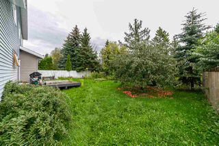 Photo 29: 4143 147 Street in Edmonton: Zone 14 House for sale : MLS®# E4171896