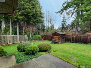 Photo 19: 3963 Burchett Pl in VICTORIA: SE Queenswood Single Family Detached for sale (Saanich East)  : MLS®# 832290
