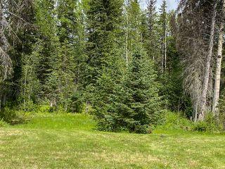 Photo 33: 41275 CHIEF LAKE Road in Prince George: Nukko Lake House for sale (PG Rural North (Zone 76))  : MLS®# R2448187