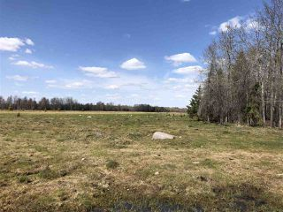 Photo 17: 225026 HWY 661: Rural Athabasca County House for sale : MLS®# E4197189
