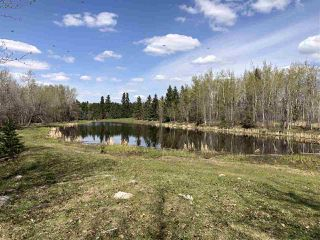 Photo 21: 225026 HWY 661: Rural Athabasca County House for sale : MLS®# E4197189
