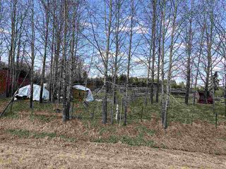 Photo 41: 225026 HWY 661: Rural Athabasca County House for sale : MLS®# E4197189