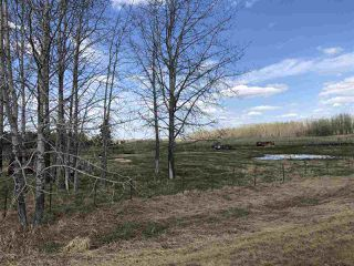 Photo 43: 225026 HWY 661: Rural Athabasca County House for sale : MLS®# E4197189