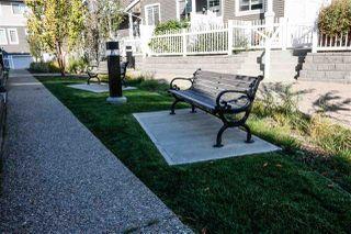 Photo 9: 19 4050 Savaryn drive in Edmonton: Zone 53 Townhouse for sale : MLS®# E4214432
