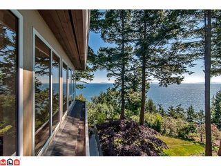 Photo 10: 1455 126A Street in Surrey: Crescent Bch Ocean Pk. House for sale (South Surrey White Rock)  : MLS®# F1227438