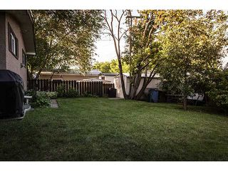 Photo 20: 356 ADAMS Crescent SE in CALGARY: Acadia Residential Detached Single Family for sale (Calgary)  : MLS®# C3577641
