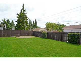 Photo 19: 6007 PINEPOINT Drive NE in CALGARY: Pineridge Residential Detached Single Family for sale (Calgary)  : MLS®# C3623865