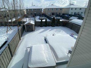 Photo 48: 5313 205 Street in Edmonton: Zone 58 House for sale : MLS®# E4191260