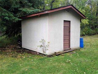 Photo 18: 5102 50 Street: Spedden House for sale : MLS®# E4196019