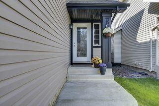 Photo 5: 1104 118A Street SW in Edmonton: Zone 55 House for sale : MLS®# E4213458
