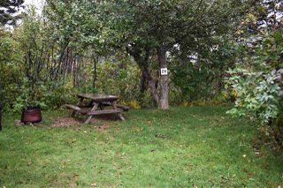 Photo 14: 50 Whale Cove Road in Whale Cove: 401-Digby County Commercial  (Annapolis Valley)  : MLS®# 202020501