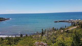 Photo 26: 50 Whale Cove Road in Whale Cove: 401-Digby County Commercial  (Annapolis Valley)  : MLS®# 202020501