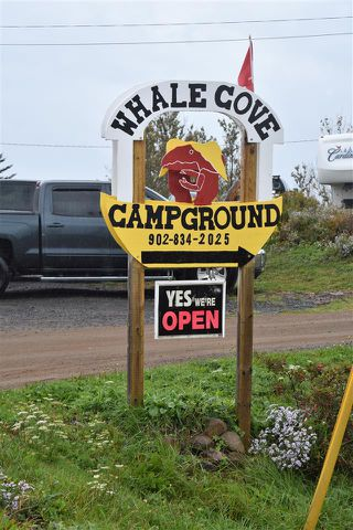 Photo 6: 50 Whale Cove Road in Whale Cove: 401-Digby County Commercial  (Annapolis Valley)  : MLS®# 202020501