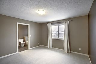 Photo 19: 50 Skyview Point Link NE in Calgary: Skyview Ranch Semi Detached for sale : MLS®# A1039930