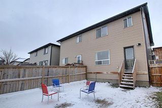 Photo 25: 50 Skyview Point Link NE in Calgary: Skyview Ranch Semi Detached for sale : MLS®# A1039930