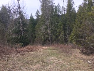 Photo 8: 10 Acres Little White Lake Beach in White Lake: Vacant Land for sale (Little White Lake)  : MLS®# 10132923