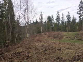 Photo 7: 10 Acres Little White Lake Beach in White Lake: Vacant Land for sale (Little White Lake)  : MLS®# 10132923