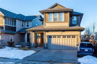 Photo 49: 84 AUBURN SHORES MR SE in Calgary: Auburn Bay House  : MLS®# C4222402