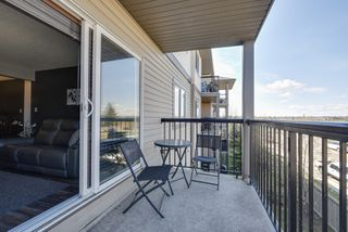 Photo 14: #326, 1180 Hyndman Road: Edmonton Condo  : MLS®#  E4155993