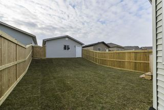 Photo 25: 2596 COUGHLAN Road in Edmonton: Zone 55 House for sale : MLS®# E4178641