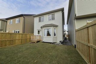 Photo 24: 2596 COUGHLAN Road in Edmonton: Zone 55 House for sale : MLS®# E4178641