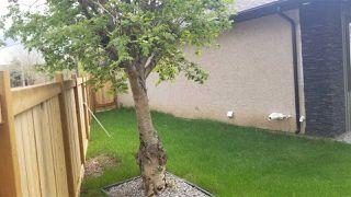 Photo 5: 11463 64 Street in Edmonton: Zone 09 House for sale : MLS®# E4198792