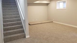 Photo 20: 11463 64 Street in Edmonton: Zone 09 House for sale : MLS®# E4198792