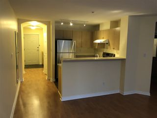 Photo 14: 308 2102 W 38TH AVENUE in Vancouver: Kerrisdale Condo for sale (Vancouver West)  : MLS®# R2480305