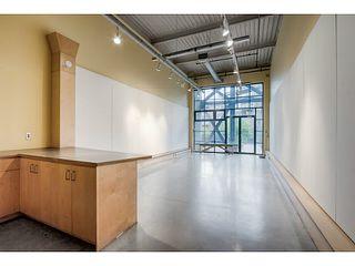 Photo 18: # 215 237 E 4TH AV in Vancouver: Mount Pleasant VE Condo for sale (Vancouver East)  : MLS®# V1120102