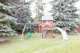 Photo 6: 11628 26 Avenue in Edmonton: Zone 16 House for sale : MLS®# E4170640