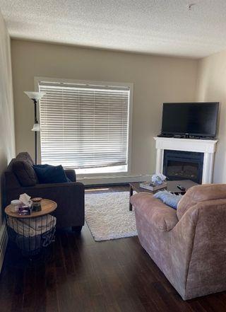 Photo 8: 203 10524 77 Avenue in Edmonton: Zone 15 Condo for sale : MLS®# E4194909