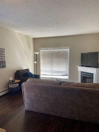 Photo 9: 203 10524 77 Avenue in Edmonton: Zone 15 Condo for sale : MLS®# E4194909