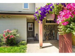 "Photo 3: 142 27456 32 Avenue in Langley: Aldergrove Langley Townhouse for sale in ""Cedar Park Estates"" : MLS®# R2479355"