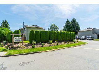 "Photo 28: 142 27456 32 Avenue in Langley: Aldergrove Langley Townhouse for sale in ""Cedar Park Estates"" : MLS®# R2479355"