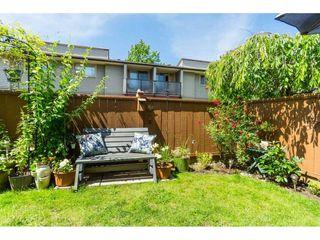 "Photo 25: 142 27456 32 Avenue in Langley: Aldergrove Langley Townhouse for sale in ""Cedar Park Estates"" : MLS®# R2479355"
