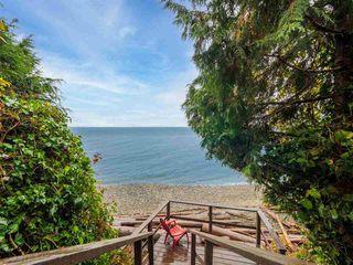 Photo 8: 3427 BEACH Avenue: Roberts Creek House for sale (Sunshine Coast)  : MLS®# R2519025