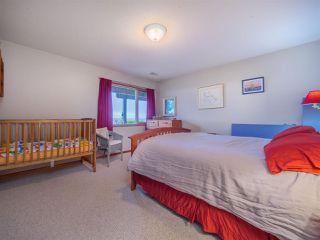 Photo 33: 3427 BEACH Avenue: Roberts Creek House for sale (Sunshine Coast)  : MLS®# R2519025