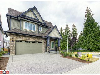 "Photo 1: 21181 77A Avenue in Langley: Willoughby Heights House for sale in ""YORKSON CREEK"" : MLS®# F1219250"