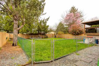 Photo 19: 21027 COOK AVENUE in Maple Ridge: Southwest Maple Ridge House for sale : MLS®# R2050917