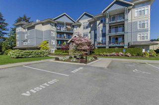 Photo 10: 304C 45595 TAMIHI WAY in Chilliwack: Vedder S Watson-Promontory Condo for sale (Sardis)  : MLS®# R2061641