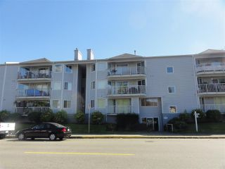 Photo 1: 304 22222 119 AVENUE in Maple Ridge: West Central Condo  : MLS®# R2103255