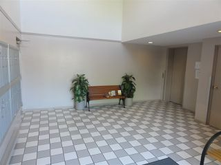 Photo 20: 304 22222 119 AVENUE in Maple Ridge: West Central Condo  : MLS®# R2103255