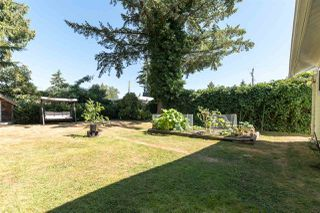 Photo 20: 10986 WREN CRESCENT in Surrey: Bolivar Heights House for sale (North Surrey)  : MLS®# R2354062