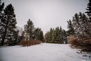 Photo 29: Moss Acreage in Kinistino: Residential for sale (Kinistino Rm No. 459)  : MLS®# SK790680