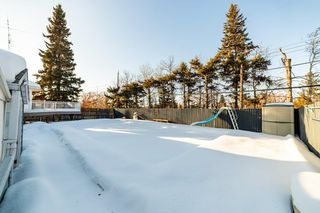 Photo 43: 41 SPRUCE Crescent: St. Albert House for sale : MLS®# E4188627