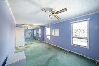 Photo 23: 41 SPRUCE Crescent: St. Albert House for sale : MLS®# E4188627
