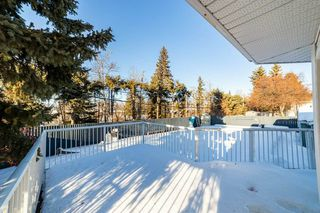 Photo 41: 41 SPRUCE Crescent: St. Albert House for sale : MLS®# E4188627