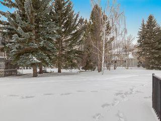 Photo 49: 3 PUMPMEADOW Crescent SW in Calgary: Pump Hill Detached for sale : MLS®# C4291148